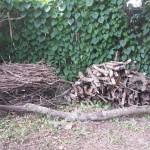 my new wood pile